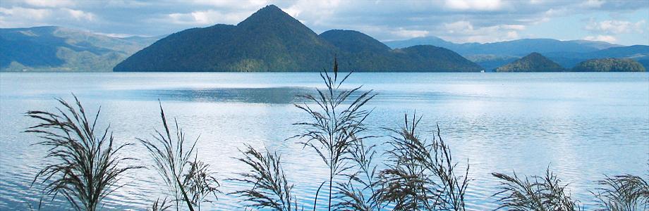 洞爺湖とススキ、ススキ、北海道洞爺湖月浦、秋