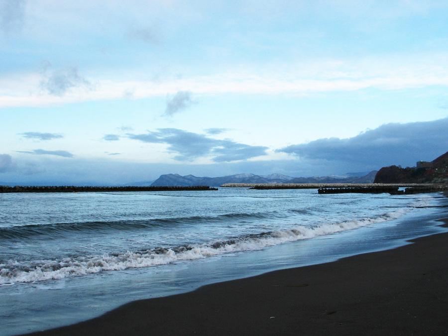 噴火湾のホタテは天然or養殖のどっち?
